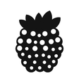 Raspberries simple icon vector image vector image