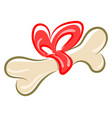 bone with a bow on white background vector image vector image