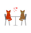 cat lovers in cafe lover in restaurant pet vector image vector image