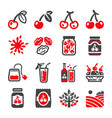 cherry icon set vector image vector image
