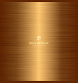 gold metallic metal polished background and vector image