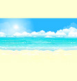 ocean and sandy beach vector image