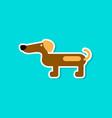 paper sticker on stylish background dog dachshund vector image vector image
