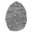 Dashed Line Fingerprint vector image vector image