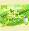 green peas 3d realistic package design vector image