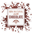 Paper emblem with chocolate splashes vector image vector image