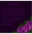 Purple roses background pattern vector image vector image