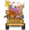 wild animals in jeep car isolated on white