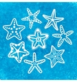 collection of various sea starfish vector image vector image