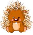 Fun zoo Porcupine vector image