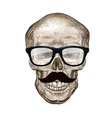 Hipster skull with sunglasses and mustache vector image