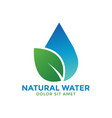 natural water graphic design template vector image
