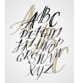 original alphabet hand-made lettering vector image