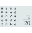 Set of 2017 Year the Rooster icons vector image