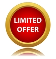 Limited offer icon vector image