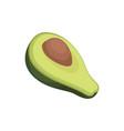 avocado source of edible oil vector image vector image
