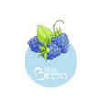 bright blackberry icon vector image vector image