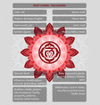 chakras symbols with description meanings vector image