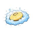 Soap in foam vector image