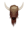 buffalo in cartoon style vector image