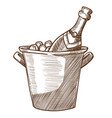 champagne bottle in ice bucket hand drawn sketch vector image