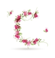 Floral letter C for your design vector image vector image