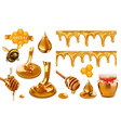 honey bee honeycomb drop seamless pattern set 3d vector image vector image