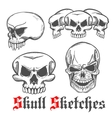 Human skulls and monster cranium sketches vector image