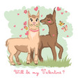 two lovers kissing llamas surrounded by hearts vector image