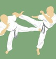 two men are engaged in karate on a green vector image vector image