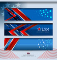 banner american design vector image