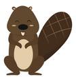 cartoon beaver a beaver vector image vector image