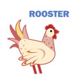 domestic bird rooster isolated vector image vector image