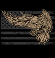 eagle wing vintage flag usa vector image vector image
