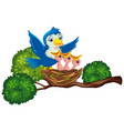 mother bird feeding chicks vector image vector image