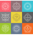set line signs and emblems with hipster symbols vector image vector image