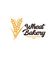 wheat bakery logo wheat rice agriculture logo vector image vector image
