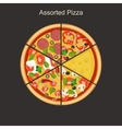 Assorted pizza vector image