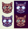 cats wear glasses vector image vector image