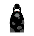 grim reaper cat death with cats head pet in hood vector image