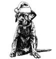 Labrador Retriever 01 1 vector image vector image