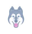 siberian husky logotype vector image