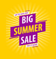 summer sale banner template design vector image vector image
