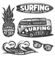 Vintage monochrome surfing graphics set