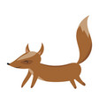 cartoon fox fox drawing vector image vector image