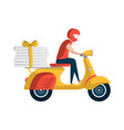 courier with pizza boxes on motorbike vector image
