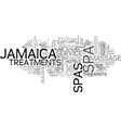 jamaica spas text background word cloud concept vector image vector image