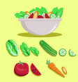 salad vector image