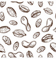 seamless nuts and fried potato chips pattern vector image vector image