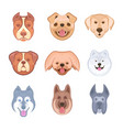 set stickers dogs vector image vector image